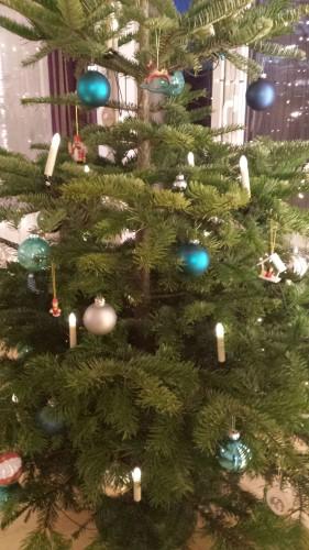 Weihnachten mit der Familie - Weihnachtsbaum_72dpi
