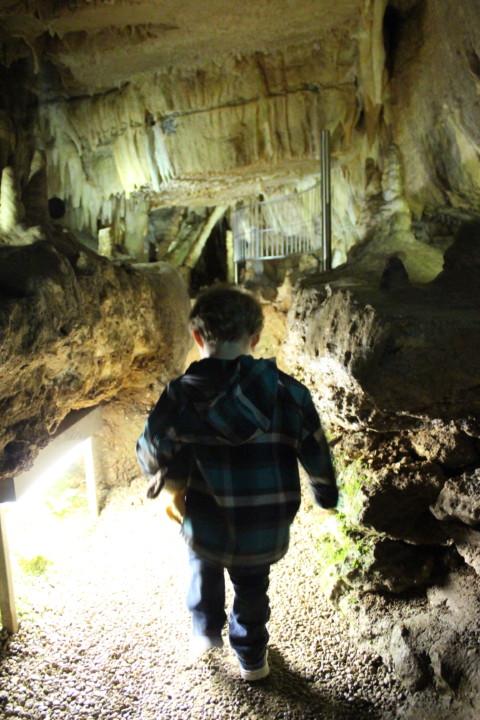 Wanderung-zur-Binghöhle-Fränkische-Schweiz- (4)