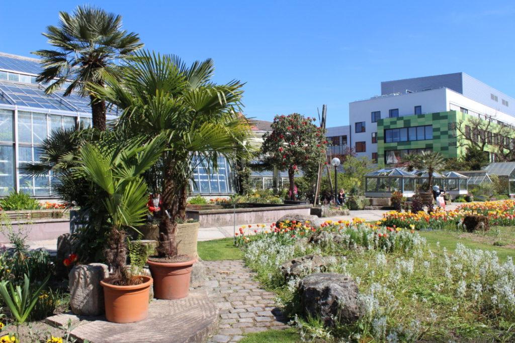 Botanischer-Garten-Erlangen-Tipps