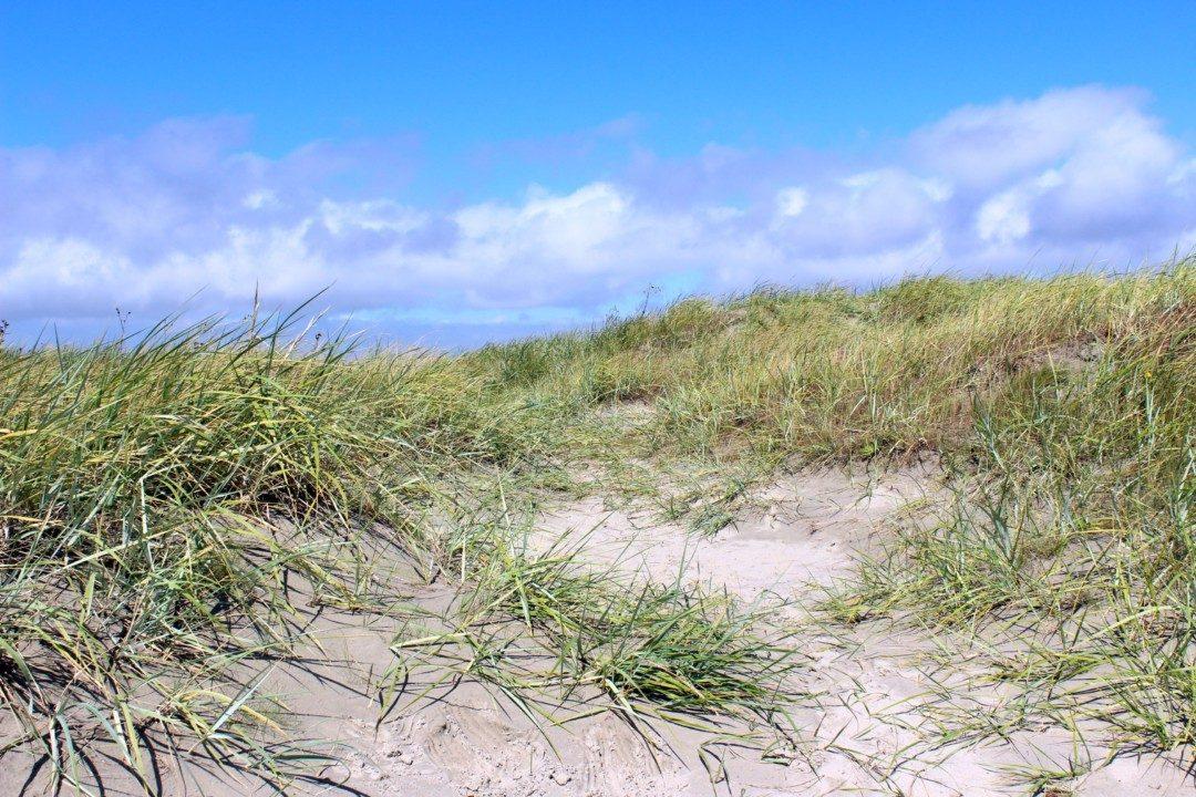 Urlaub-Greetsiel-Nordsee (20)