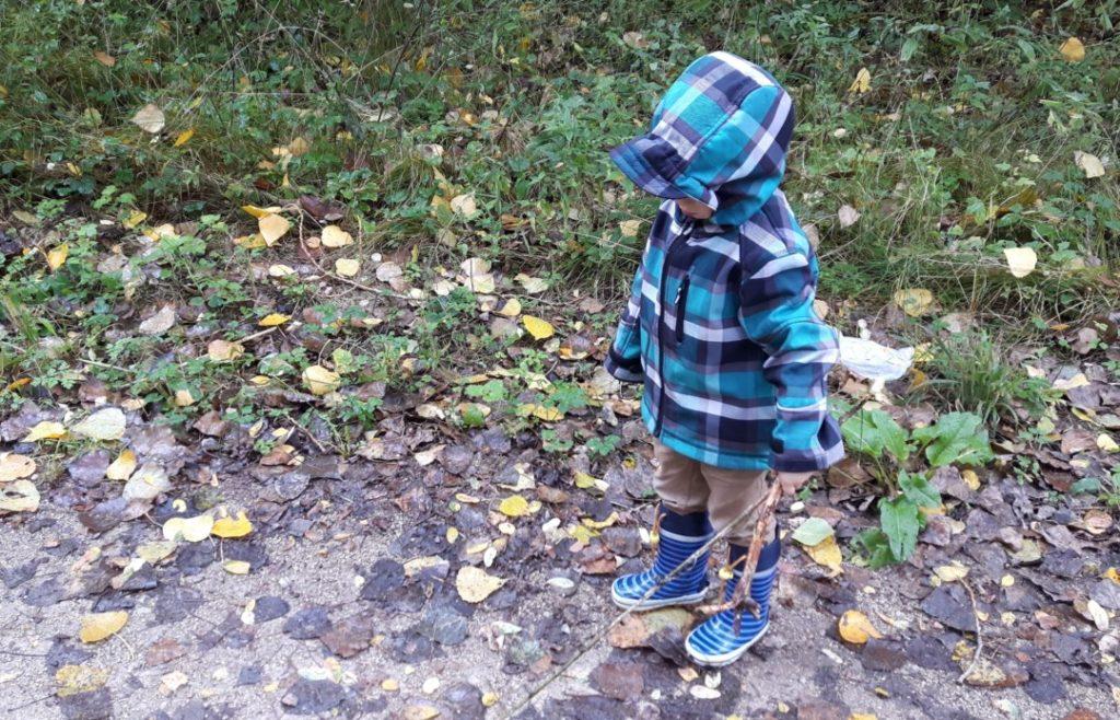 WIB - Wochenende in Bildern - Waldspaziergang