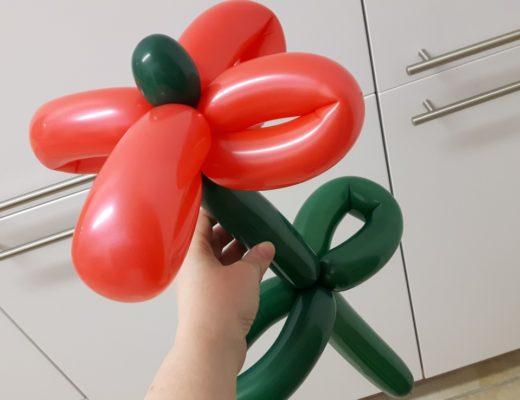 12von12 - März - 8 - Luftballonblume