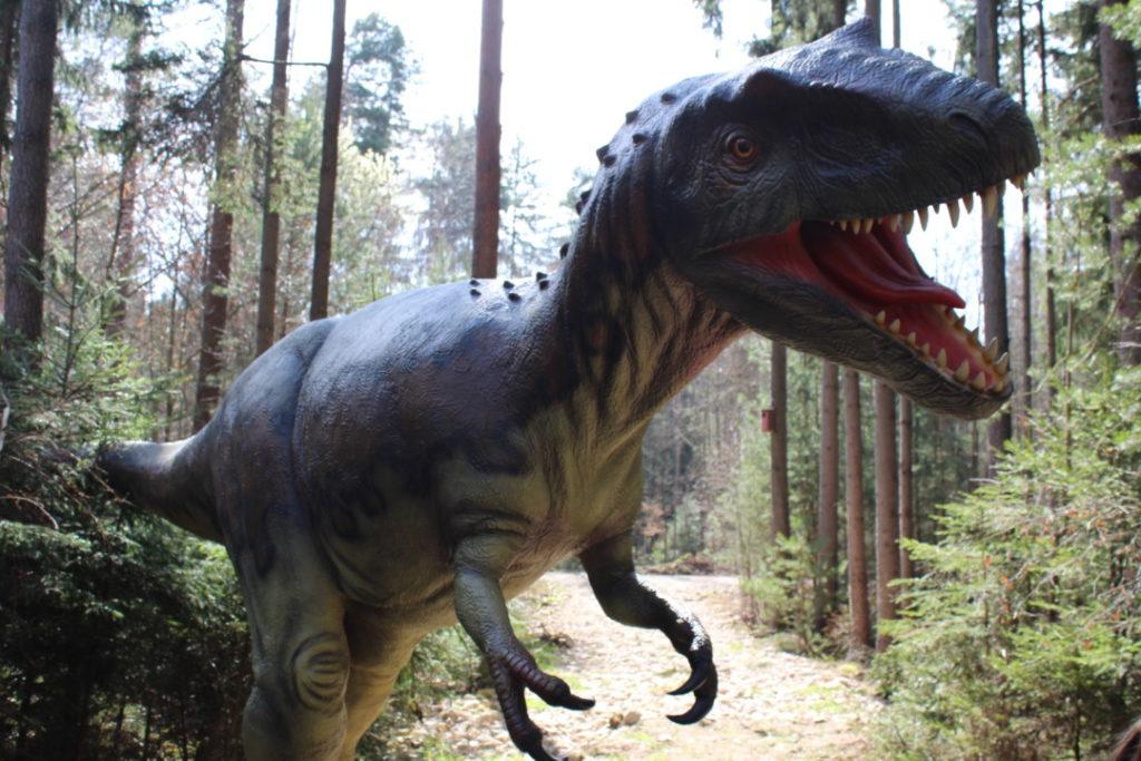 Dinopark - Altmühltal (12)