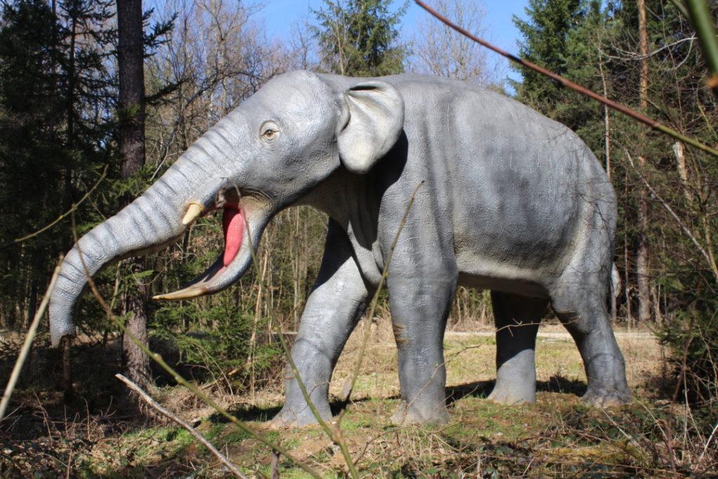 Dinopark - Altmühltal (15)