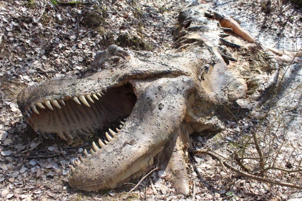 Dinopark - Altmühltal (2)