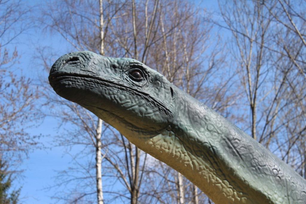 Dinopark - Altmühltal (4)