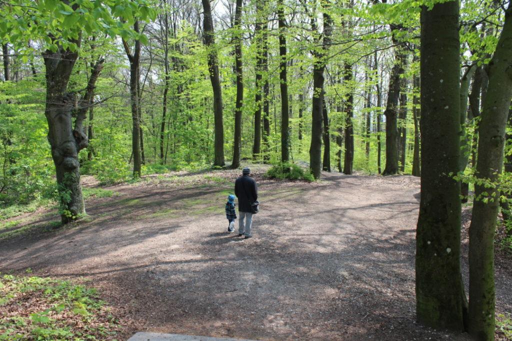 Familienausflug - Alte Veste Fürth - Dambach (4)