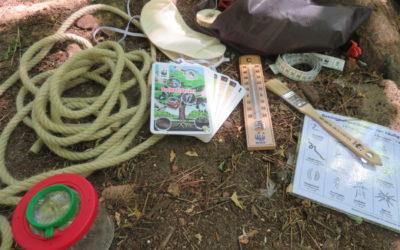 Gewinne ein Baumentdecker-Set für deinen Kindergarten – Sparda Bank und WWF machen's möglich